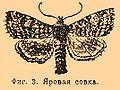 Brockhaus and Efron Encyclopedic Dictionary b60 673-1.jpg