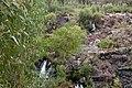 Broken Falls, Grampians, Victoria Australia (4843653010).jpg