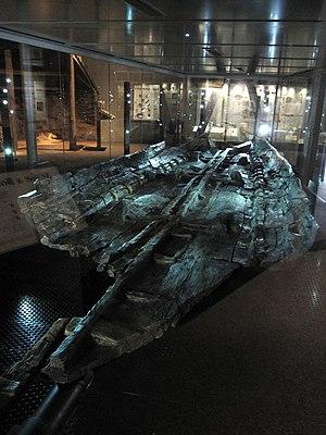 Dover Bronze Age Boat - Dover Bronze Age Boat at Dover Museum