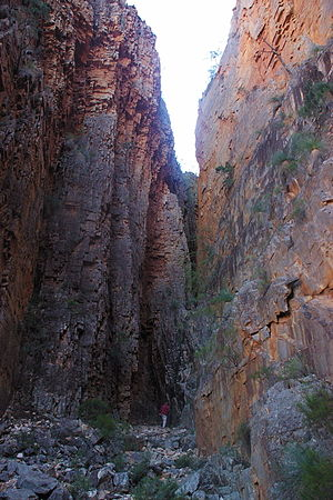 Vulkathunha-Gammon Ranges National Park - Bunyip Chasm