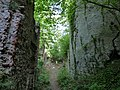 Burg Merkenstein 20.jpg