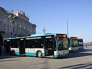 Buses of Trieste Trasporti parked on Piazza Unità d'Italia