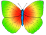 Butterfly rainbow colored.png