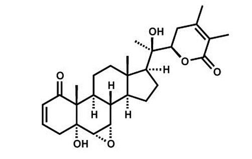 A New Medical Breakthrough for the Coronavirus (COVID-19) Disease 2