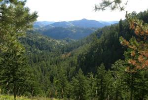 Cache La Poudre Wilderness - Image: Cache La Poudre Wilderness