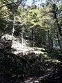 Camí de Lizarrusti a Lareo 20180802 104245.jpg