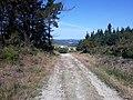 Camino Primitivo, Monte de Penoucos 01.jpg
