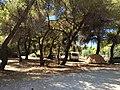 Camping apollon - panoramio.jpg