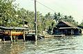 Canal in Bangkok, 1982-7.jpg