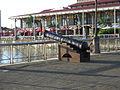 Cannon (4717467652).jpg