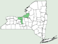 Carex aquatilis var substricta NY-dist-map.png