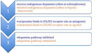 Cariprazine - Mechanism of cariprazine action as antagonist or agonist.