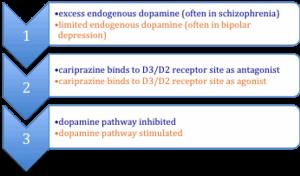 Cariprazine - Mechanism of cariprazine action as antagonist or agonist.