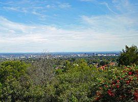 Sydney carlingford