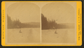 Carriage and boy on a beach, from Robert N. Dennis collection of stereoscopic views.png
