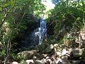 Cascada Montseny.JPG