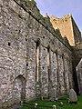 Cashel Cathedral, Rock of Cashel, Caiseal, Éire (46591615311).jpg