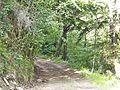 Cerbaia-paesaggio 03.jpg