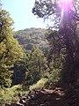 Cerro el Roble.JPG