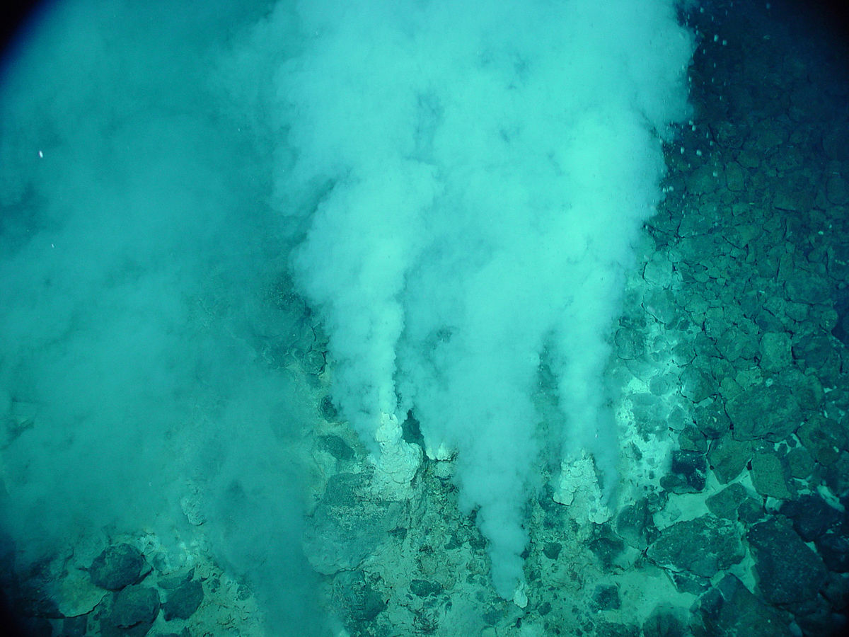 chemosynthesis hydrothermal vent life