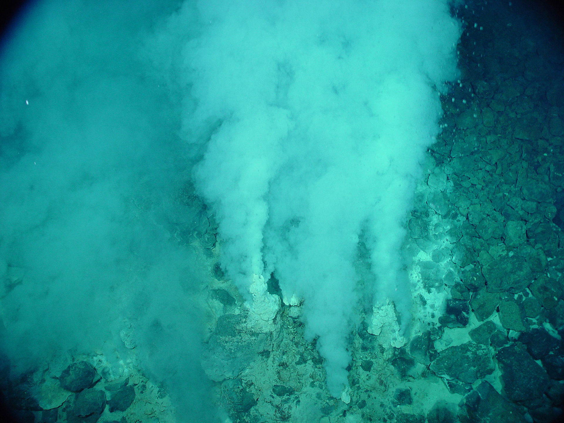 Hydrothermal vent - Wikipedia
