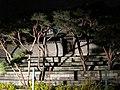 Changdeokgung (5433288935).jpg