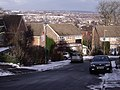 Cheviot Way - geograph.org.uk - 2208792.jpg
