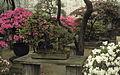 China1982-071.jpg