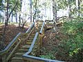 Chipley Falling Waters SP stairs01.jpg