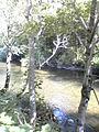 Cierny Vah River2.JPG