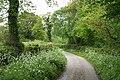 Clayhidon, lane from Lilycombe Cross - geograph.org.uk - 173455.jpg