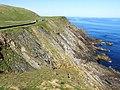 Cliffs at Sumburgh Head - geograph.org.uk - 1307443.jpg
