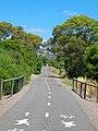 Coast to Vines Bike Path - panoramio (2).jpg