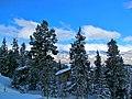 Colorado 2013 (8570689929).jpg