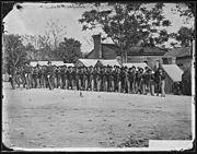"""Company """"A"""", 9th Indiana Infantry - NARA - 524693"""