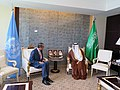 Cornel Feruta & HE Dr. Ibrahim Alassaf (01890372) (48797623763).jpg