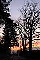 Coucher de soleil sur Cologny - panoramio (69).jpg