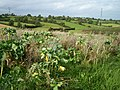 Country Landscape, Madden Road, Tandragee. - geograph.org.uk - 565200.jpg