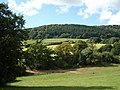 Country view from the garden of the Three Horseshoes - geograph.org.uk - 561821.jpg