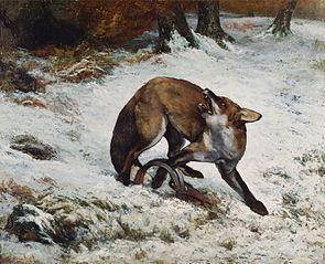 Fox Caught in a Trap