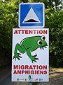 Coye-la-Forêt - Panneau migration amphibiens.jpg