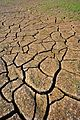 Cracked earth2 (4460361396).jpg