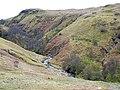 Creag Dubh - geograph.org.uk - 1244649.jpg