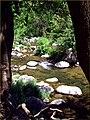 Creek, Oak Creek Canyon, AZ 7-30-13e (9508002677).jpg