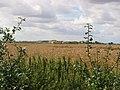 Criftins Farm - geograph.org.uk - 35336.jpg