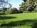 Crockacrotagh - geograph.org.uk - 65030.jpg