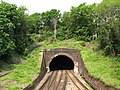 Crystal Palace Tunnel - geograph.org.uk - 805688.jpg