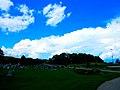 Cumulonimbus Incus Cloud - panoramio.jpg