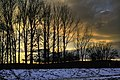 Das letzte Licht des Tages - The last light of the day - panoramio.jpg