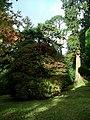 Dawyck Botanic Garden - geograph.org.uk - 678828.jpg